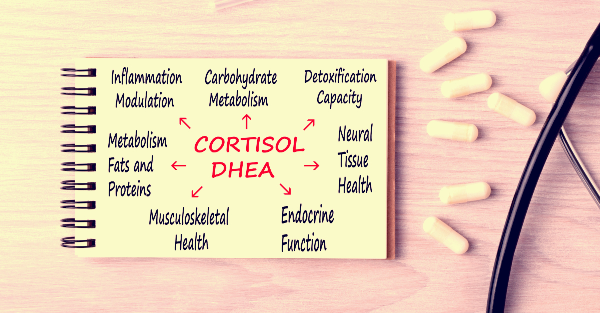 cortisol dhea ratio
